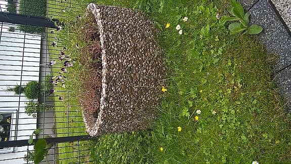 Waschbeton Pflanzkübel pflanzkübel waschbeton durchmesser ca. 075m höhe 0,35m - hoork