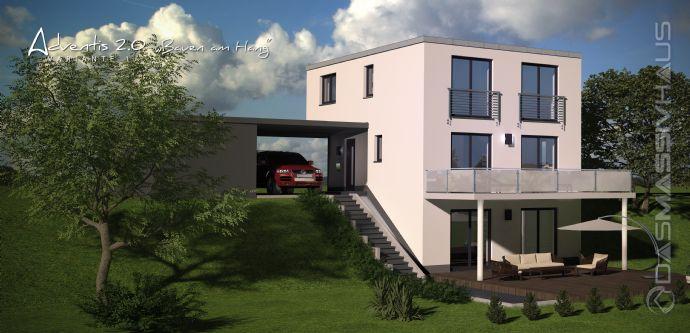 bauen am hang stadtvilla eff 55 die klassikerin schlicht von au en und anspruchsvoll. Black Bedroom Furniture Sets. Home Design Ideas