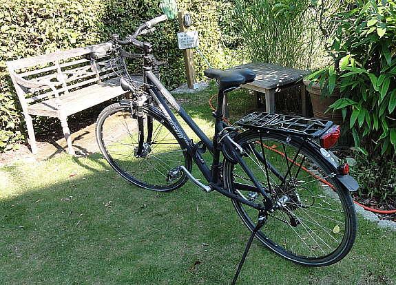frauen fahrrad 28 zoll nabendynamo